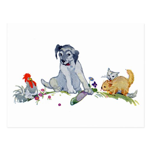 Dog with Two Kittens, Hen and Shoe Post Card