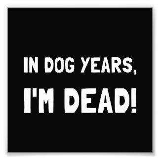 Dog Years Dead Photo