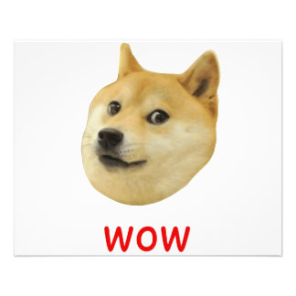Doge Very Wow Much Dog Such Shiba Shibe Inu 11.5 Cm X 14 Cm Flyer