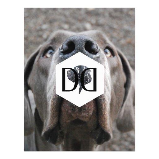 Doggenzucht inventory flyer