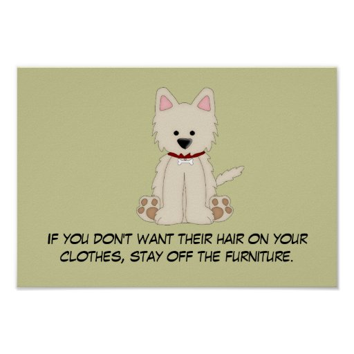 Doggie Hair Rule #2 Poster
