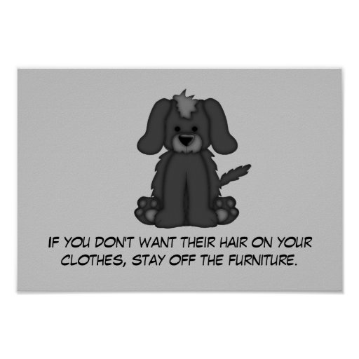 Doggie Hair Rule #3 Poster
