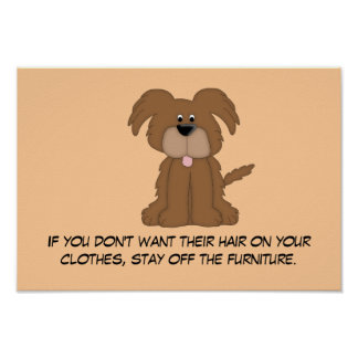Doggie Hair Rule #4 Poster