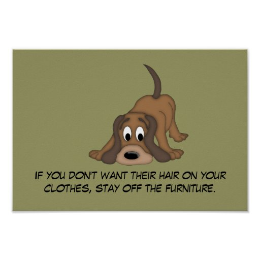 Doggie Hair Rule #5 Poster