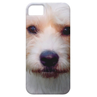 DOGGIE IPHONE COVER iPhone 5 CASES