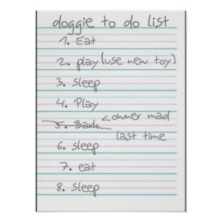 Doggie To Do List - Eat, Play, Sleep Poster