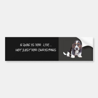 doggy bumper sticker