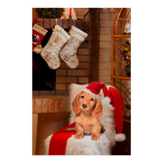 Doggy Christmas Print