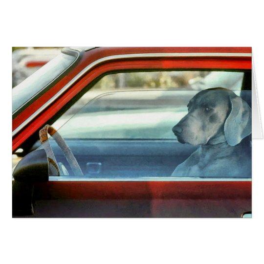 Doggy driver card