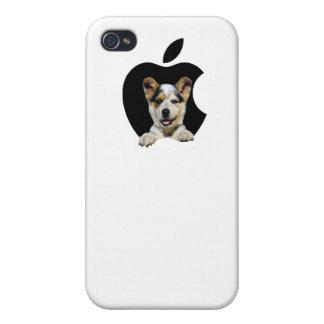 doggy in  iPhone 4/4S covers
