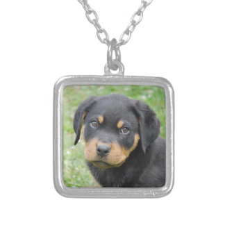 Doggy McDogface Rottweiler Puppy Silver Plated Necklace