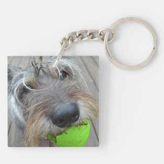 Doggy Nose Key Chain