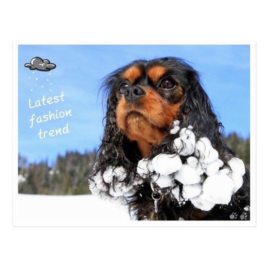 Doggy - winter latest fashion trend postcard