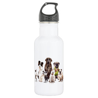 Dogs 532 Ml Water Bottle