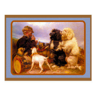 Dogs and Sailor Playing Card