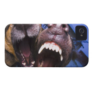 Dogs barking iPhone 4 case