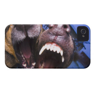 Dogs barking iPhone 4 Case-Mate cases