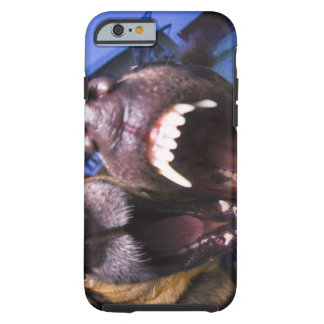 Dogs barking tough iPhone 6 case