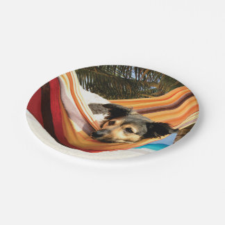 Dog's Beach Time 7 Inch Paper Plate