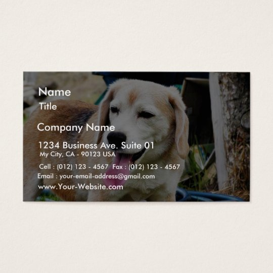 Dogs Beagles Tongues Fur Panting Business Card