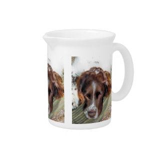 DOGS BEVERAGE PITCHER