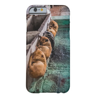 Dogs curling up sleeping barely there iPhone 6 case