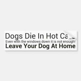 Dogs Die In Hot Cars Bumper Sticker