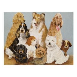 Dogs' Dinner Postcard