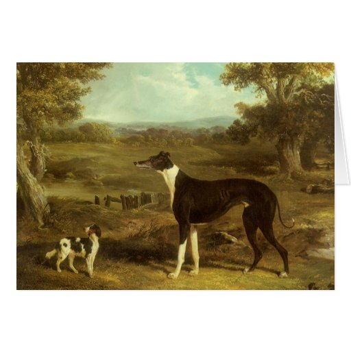 Dogs, Greyhound and Spaniel; Doctor Fop by Herring Greeting Card