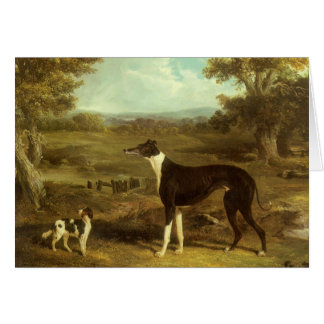 Dogs, Greyhound and Spaniel, Doctor Fop by Herring Greeting Card