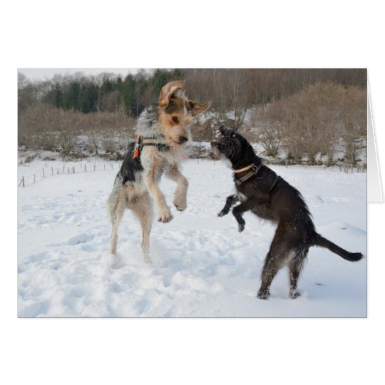 Dogs having fun in the snow Christmas Card