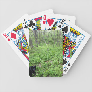 Dogs in the Woods Bicycle Playing Cards