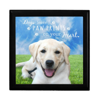 Dogs leave paw prints on your heart gift box