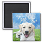 Dogs leave paw prints on your heart square magnet