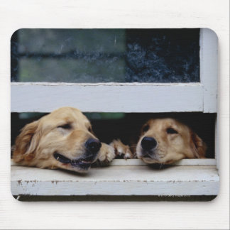Dogs Looking Out a Window Mouse Mat