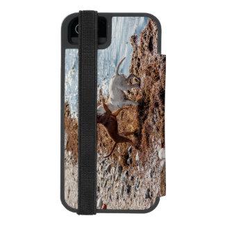 Dogs on beach incipio watson™ iPhone 5 wallet case