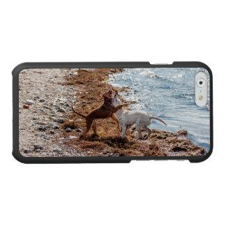 Dogs on beach incipio watson™ iPhone 6 wallet case