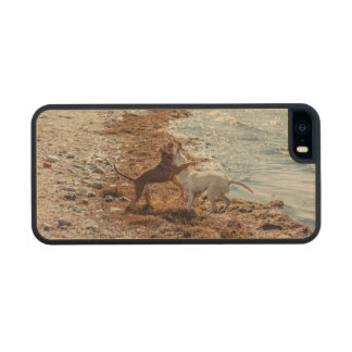 Dogs on beach iPhone 6 plus case