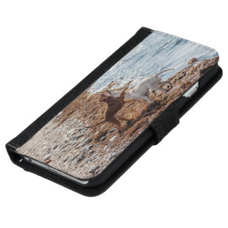 Dogs on beach iPhone 6 wallet case