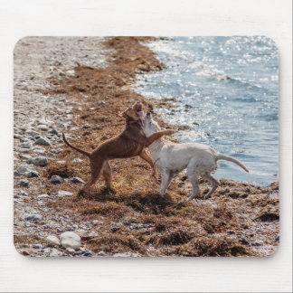 Dogs on beach mouse pad