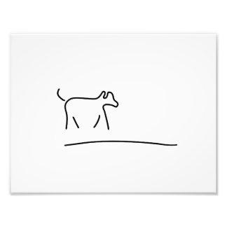 dogs play domestic animal photo print