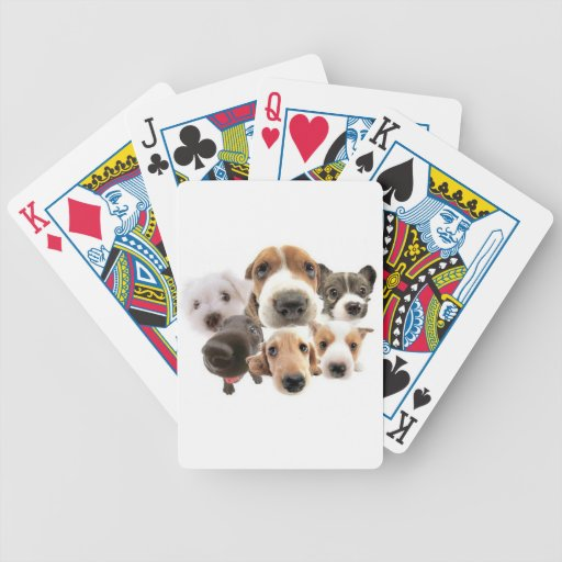 Dogs Bicycle Poker Deck