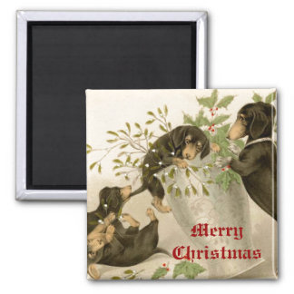Dogs playing with Christmas mistletoe & holy berry Square Magnet