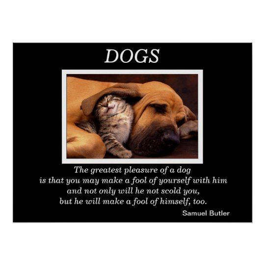 DOGS Posters 3