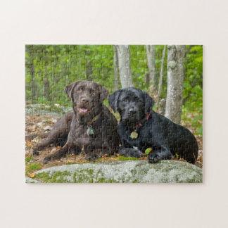 Dogs Puppies Black Lab Chocolate Labrador Retrieve Jigsaw Puzzle