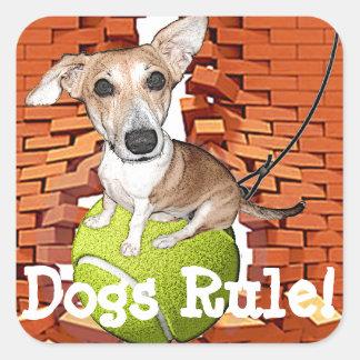 Dogs Rule Square Sticker