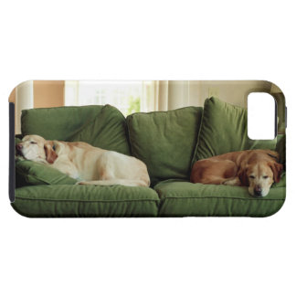 Dogs sleeping on sofa case for the iPhone 5