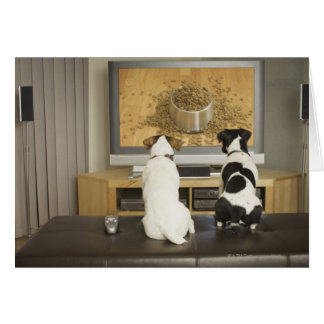 Dogs watching dog dish with food on TV Card
