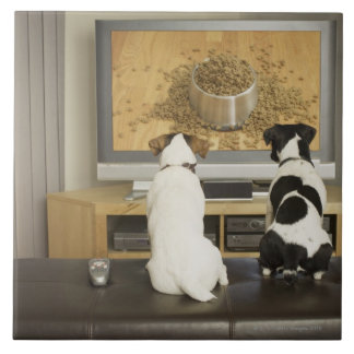 Dogs watching dog dish with food on TV Tile