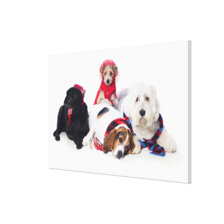 Dogs wearing winter accessories canvas print